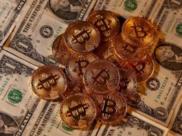 Do you really need to invest in bitcoin? Pros & Cons